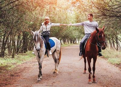 Proposal-locations-in-Sydney-Horse-riding-in-Centennial-Park