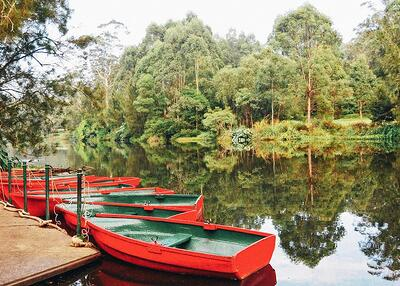 Proposal-locations-in-Sydney-Lane-Cove-National-Park