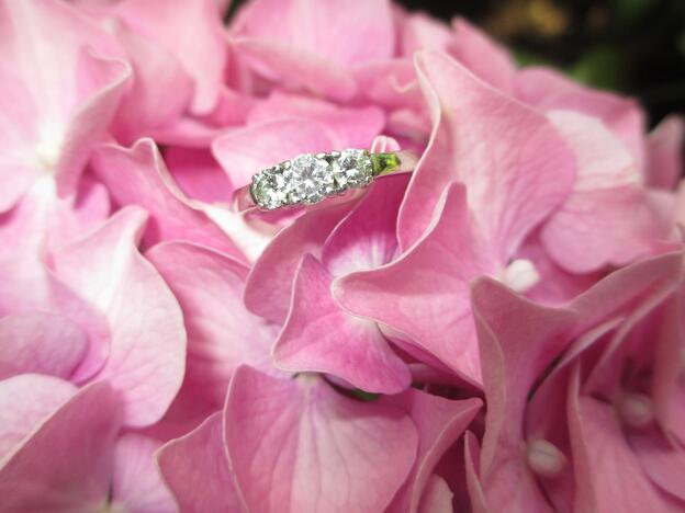 ring-1665623_1920